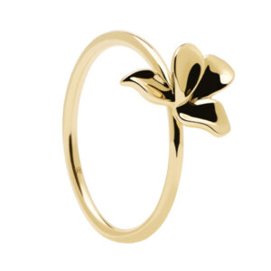 AN01-182-14 PDP BLOSSOM NARCISE GOLD MIS 14